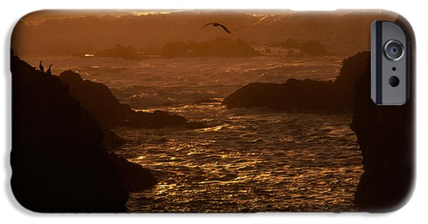 Flying Seagull iPhone Cases - Californias Pacific Coast iPhone Case by Ron Sanford