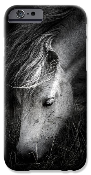 White Horses iPhone Cases - Call Me The Wind iPhone Case by Shane Holsclaw