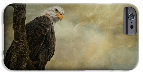 Eagle iPhone Cases - Call of Honor iPhone Case by Reflective Moments  Photography and Digital Art Images