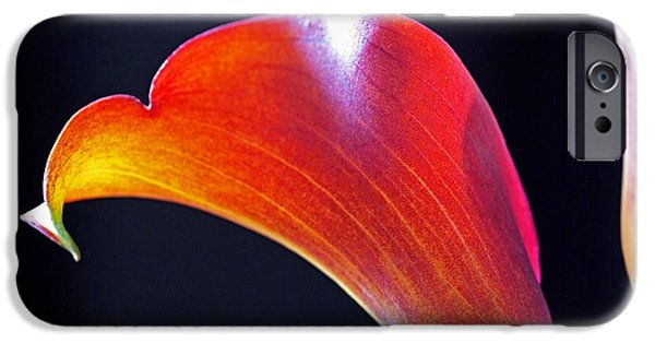 Lilies iPhone Cases - Calla Colors and Curves iPhone Case by Rona Black