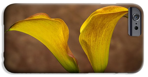 Delicate iPhone Cases - Calla Lilies iPhone Case by Sebastian Musial