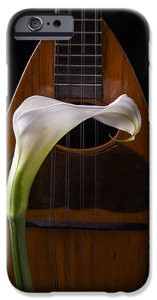 Recently Sold -  - Floral Photographs iPhone Cases - Calla Lily And Mandolin iPhone Case by Garry Gay