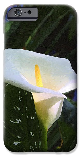 Calla Lily iPhone Case by Viktor Savchenko
