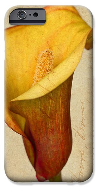 Calla Lily Vintage  iPhone Case by Heidi Smith