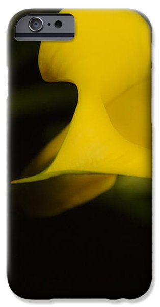 Calla Lily Yellow III iPhone Case by Ron White