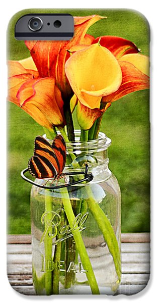 Interior Still Life iPhone Cases - Callas and the Butterfly iPhone Case by Darren Fisher