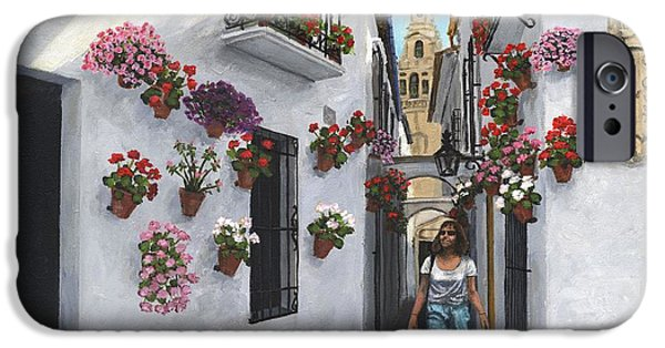 Alley Paintings iPhone Cases - Calle de las Flores Cordoba iPhone Case by MGL Meiklejohn Graphics Licensing