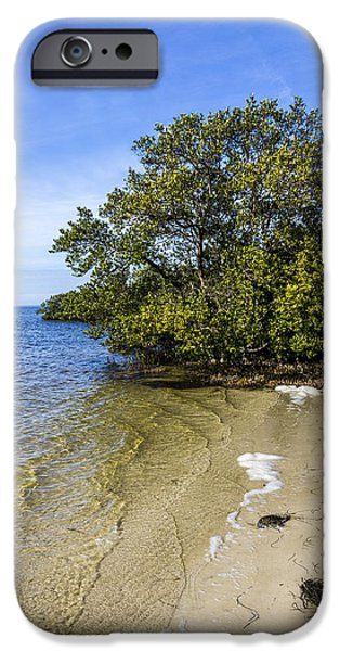 Mangrove iPhone Cases - Calm Waters on the Gulf iPhone Case by Marvin Spates