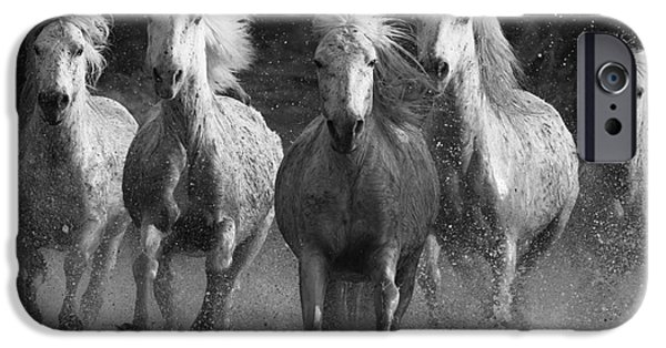 Horse iPhone Cases - Camargue Horses Running iPhone Case by Carol Walker