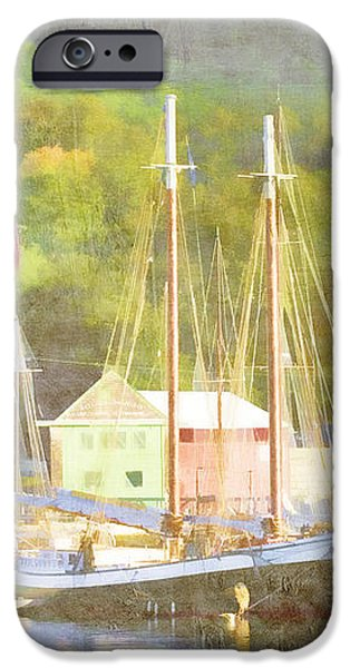 Camden Harbor Maine iPhone Case by Carol Leigh