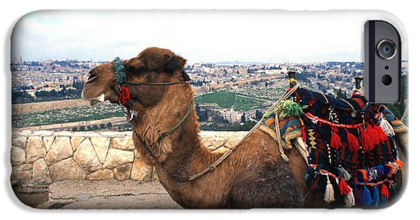 From The Dome iPhone Cases - Camel and Jerusalem from Mount Olive iPhone Case by Thomas R Fletcher