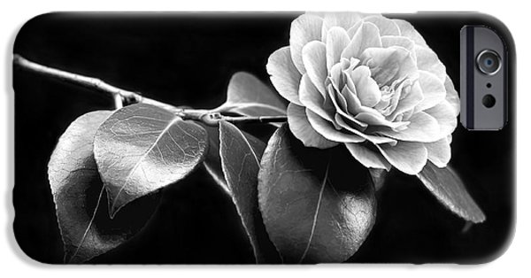 Camellia iPhone Cases - Camellia Flower in Black and White iPhone Case by Jennie Marie Schell