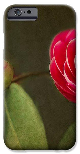 Camellia iPhone Case by Rebecca Cozart