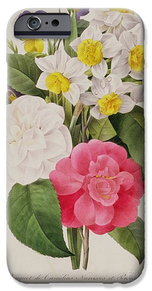 Pinks And Purple Petals iPhone Cases - Camellias Narcissus and Pansies iPhone Case by Pierre Joseph Redoute