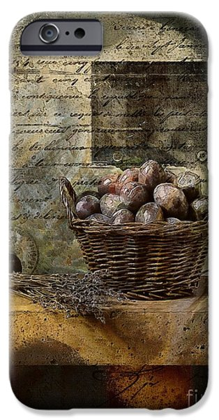 Antiques iPhone Cases - Campagnard - Rustic Still Life - s02sp iPhone Case by Variance Collections