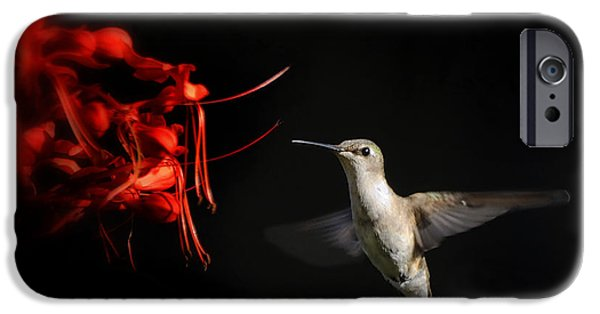 Ruby Garden Jewel iPhone Cases - Can I Take A Sip iPhone Case by Carol Eade