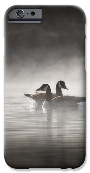 Geese iPhone Cases - Canada Geese In The Fog iPhone Case by Bill  Wakeley
