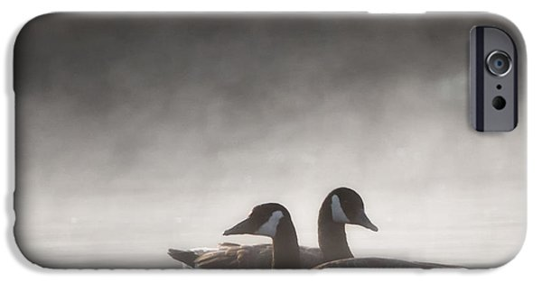 Geese iPhone Cases - Canada Geese In The Fog Square iPhone Case by Bill  Wakeley