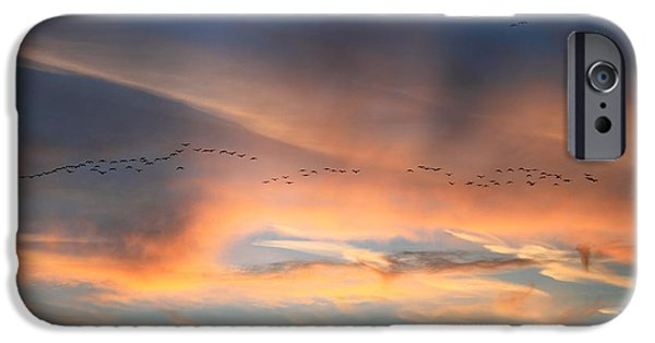 Concord Massachusetts iPhone Cases - Canada Goose Flock Sunset iPhone Case by John Burk