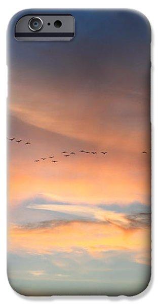 Canada Goose Flock Sunset iPhone Case by John Burk