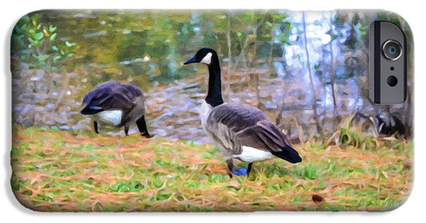 Canadian Geese Paintings iPhone Cases - Canadian geese in the park 3 iPhone Case by Lanjee Chee