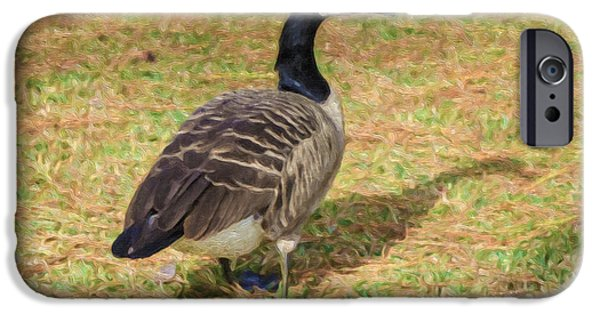Canadian Geese Paintings iPhone Cases - Canadian geese in the park iPhone Case by Lanjee Chee