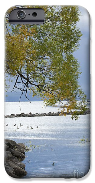 Recently Sold -  - Willow Lake iPhone Cases - Canandaigua Lake Outlet iPhone Case by Roger Bailey