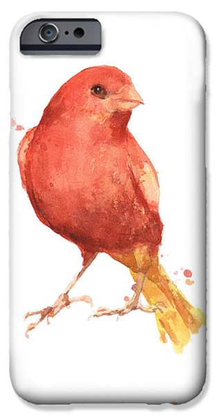 Canary iPhone Cases - Canary Bird iPhone Case by Alison Fennell