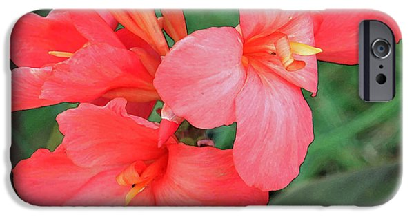 Canna iPhone Cases - Cannas Amarillo iPhone Case by Suzanne Gaff