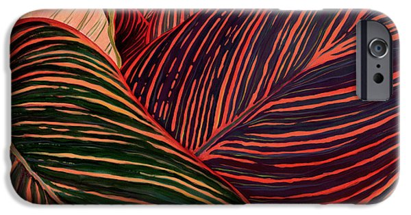 Canna iPhone Cases - Cannas Leaves iPhone Case by Kenneth Hershenson