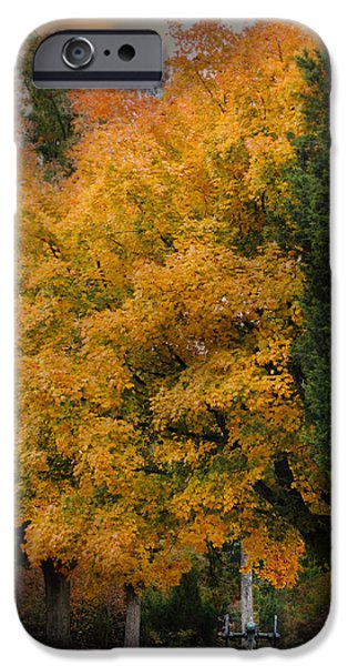 Fall Scenes iPhone Cases - Cannon Under the Golden Tree - Autumn Scene iPhone Case by Jai Johnson