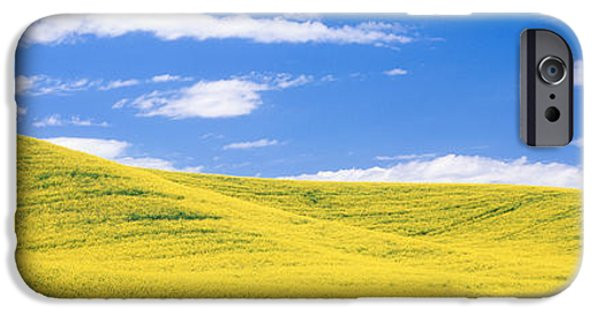 Canola Field iPhone Cases - Canola Fields, Washington State, Usa iPhone Case by Panoramic Images