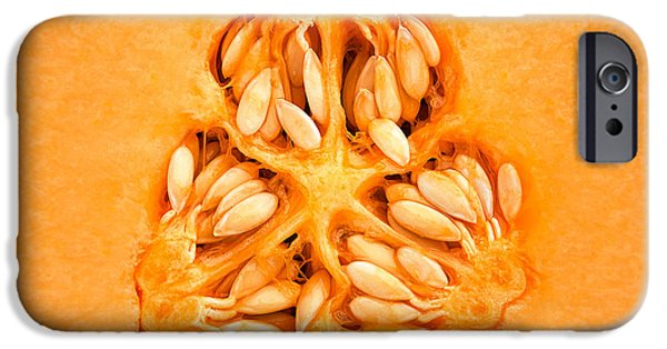Slices iPhone Cases - Cantaloupe Melon Inside iPhone Case by Johan Swanepoel