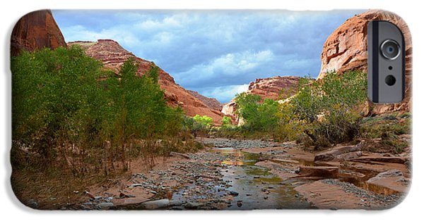 Canyon Country iPhone Cases - Canyon Country poster work A iPhone Case by David Lee Thompson
