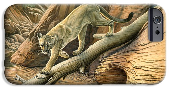 National Park Paintings iPhone Cases - Canyon Hunter -  Cougar iPhone Case by Paul Krapf