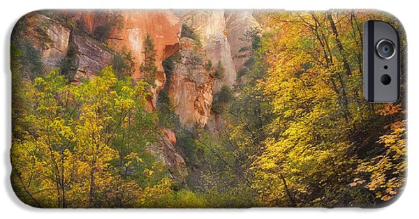 Oak Creek iPhone Cases - Canyon Kaleidoscope  iPhone Case by Peter Coskun