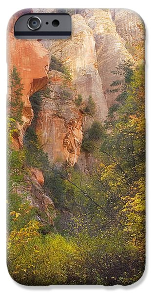 Canyon Kaleidoscope  iPhone Case by Peter Coskun