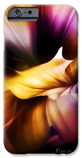 Michael Mixed Media iPhone Cases - Canyon or Flower iPhone Case by M and L Creations