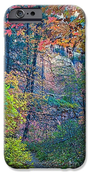 West Fork iPhone Cases - Canyon Trail iPhone Case by Brian Lambert