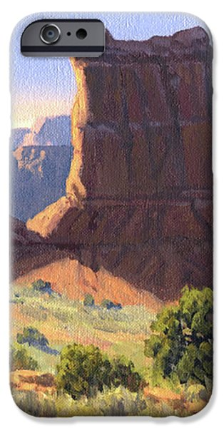 Canyonlands iPhone Case by Randy Follis