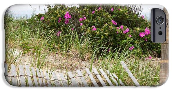Cape Cod iPhone Cases - Cape Cod Beach Roses iPhone Case by Michelle Wiarda