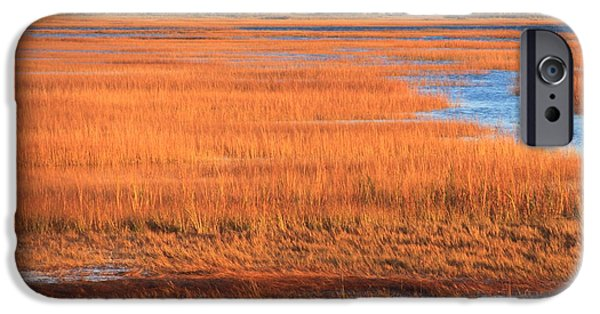Salt Marsh. New England iPhone Cases - Cape Cod Salt Marsh Autumn Evening iPhone Case by John Burk