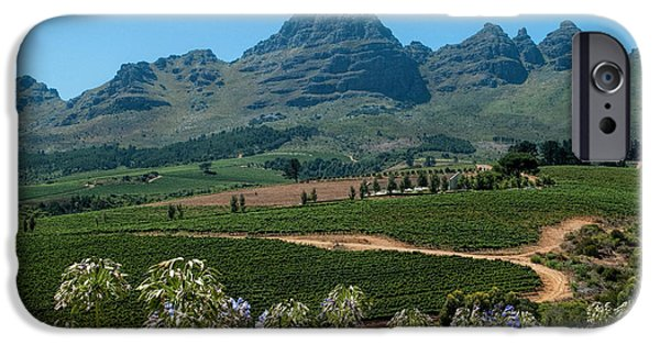 Stellenbosch iPhone Cases - Cape Winelands - South Africa iPhone Case by Photos By Pharos