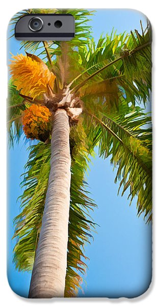 San Juan iPhone Cases - Capistrano Palm Tree iPhone Case by Duane Miller
