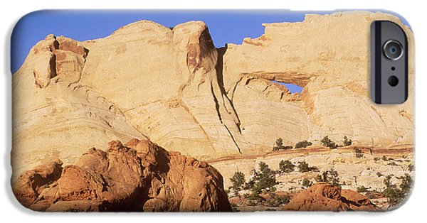 Holes In Sandstone iPhone Cases - Capitol Reef National Park, Utah iPhone Case by Mark Newman