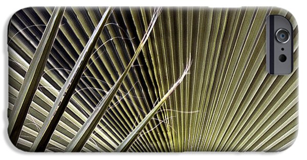 Abstract Digital Photographs iPhone Cases - Captivation - Palm Leaf iPhone Case by Ben and Raisa Gertsberg
