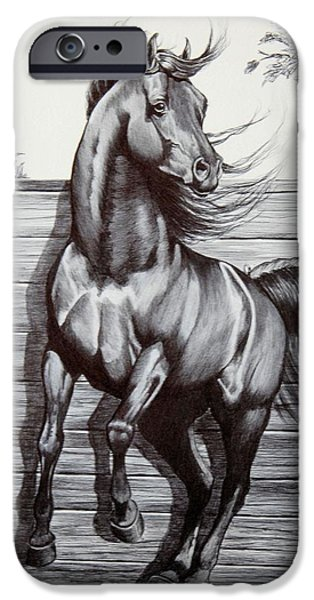 Drawing Of A Horse iPhone Cases - Captured at Last iPhone Case by Cheryl Poland