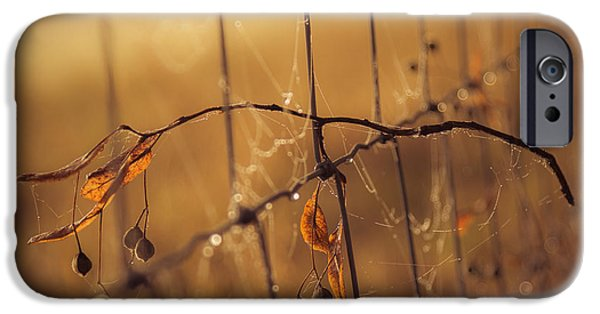 Autumn iPhone Cases - Captured iPhone Case by Chris Fletcher