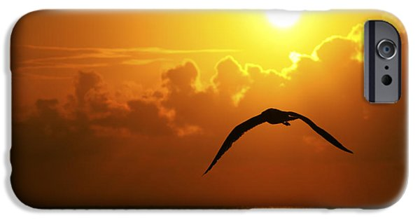Recently Sold -  - Flying Seagull iPhone Cases - Capturing Paradise iPhone Case by Ryan Smith