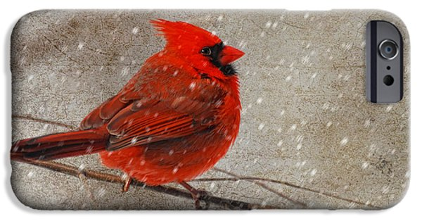 Lois Bryan Digital iPhone Cases - Cardinal in Snow iPhone Case by Lois Bryan